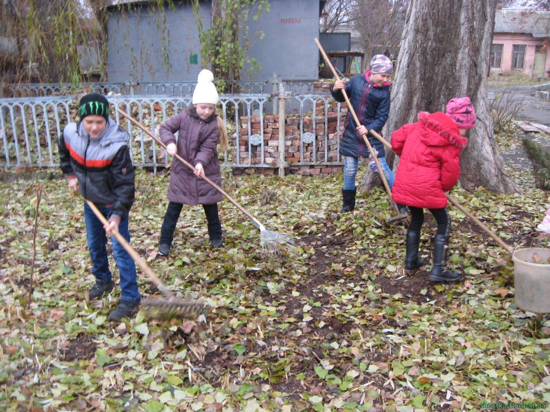 Проект опале листя користь чи шкода